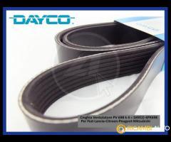 Cinghia Dayco/Pirelli Ventilatore per Fiat-Lancia-Citroen-Peugeot-Mitsubishi